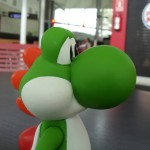 Yoshi on the road